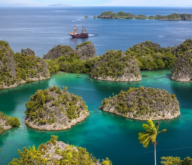 Arenui the Boutique Liveaboard - Dive Indonesia in Style ...